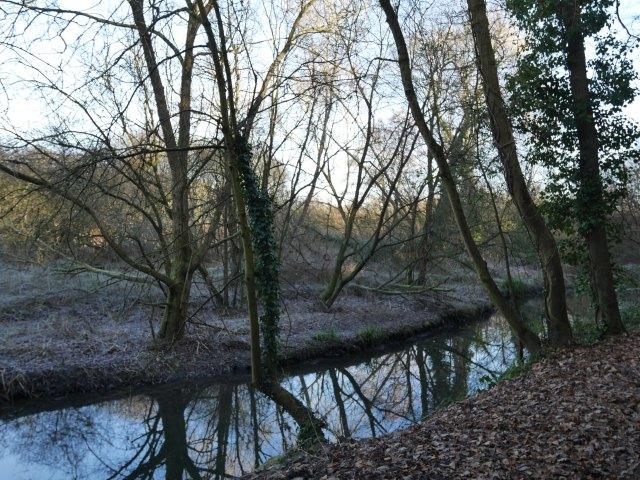 River Wey near Farnham