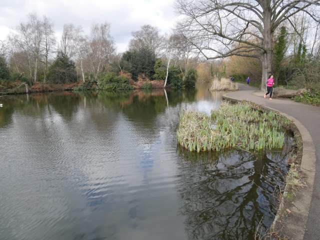 Wandsworth Common pond