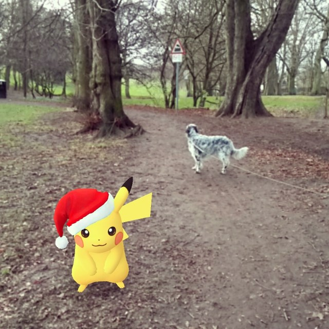 Pikachu walking the dog