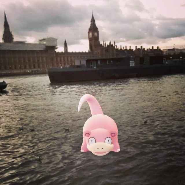 Pink hippo escaped from parliament