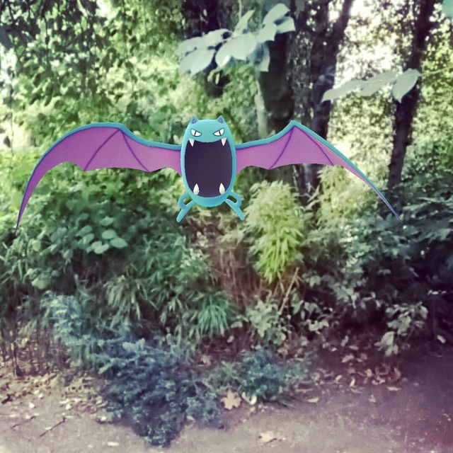 More pokemon popping out of bushes!