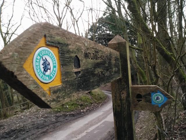 The Woldingham trails