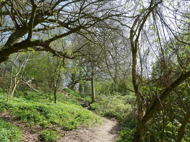 Pretty path along the ridge Kemsing Downs