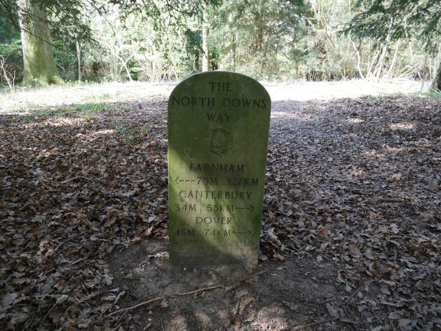 Waymarker Westfield Wood - 74 km to Dover!