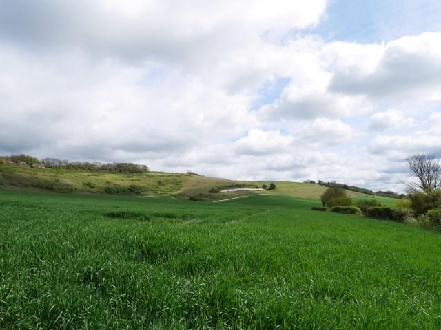 The hills behind Detling