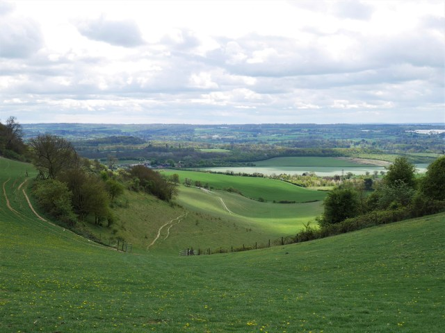 The Valley between Thurnham Castle and Civiley Wood