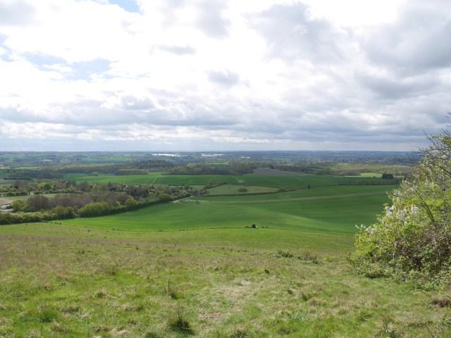 Bright green Kentish countryside