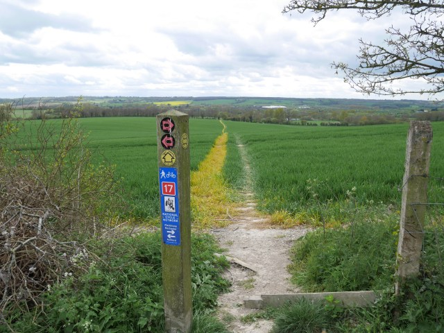 National cycle network sign
