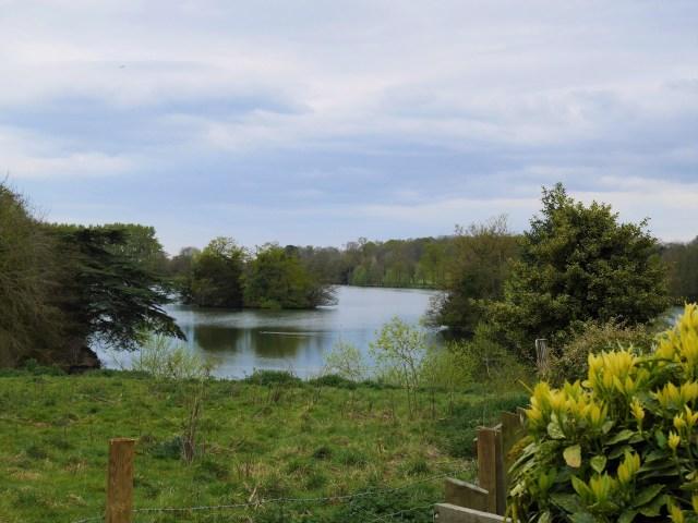 Eastwell lake