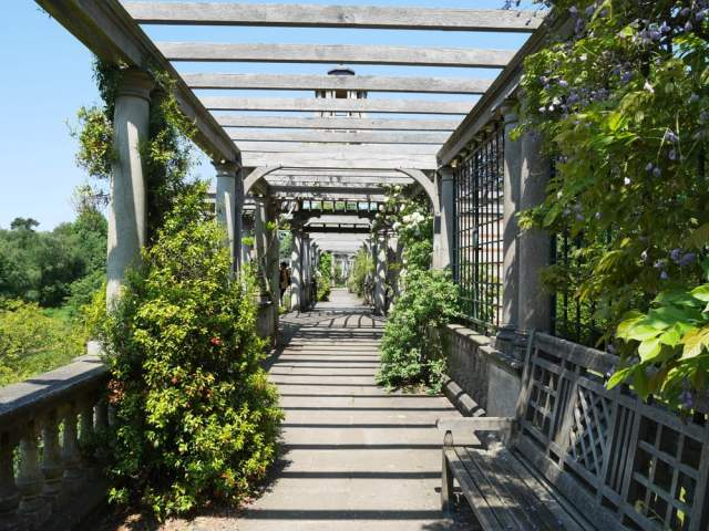 The pergola walkway