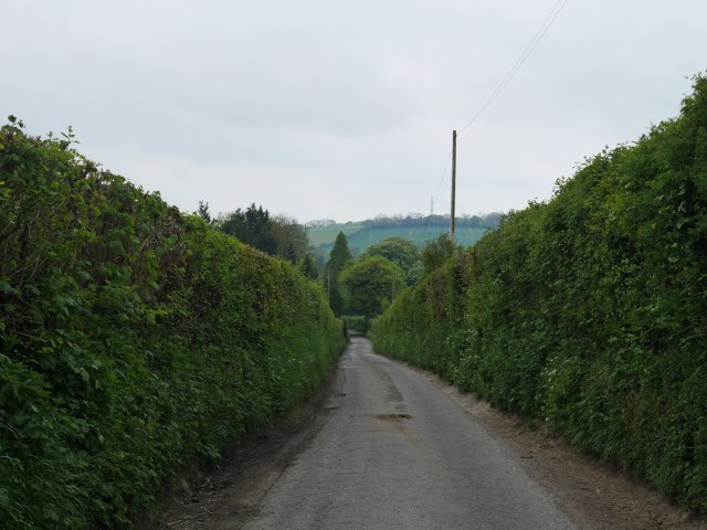 The road out of Stowting
