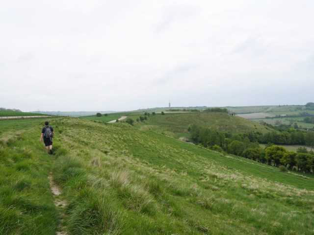Back up from the chalk pit