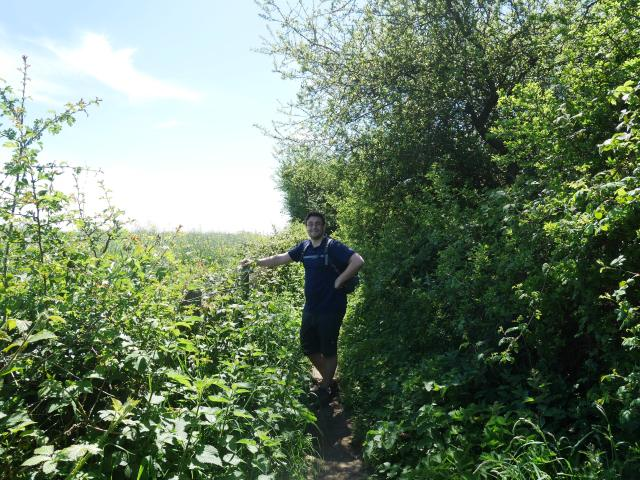 The path is slightly overgrown!