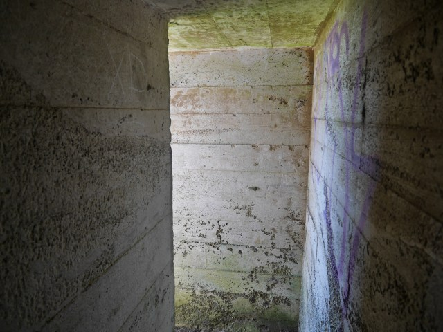 Inside the pill box