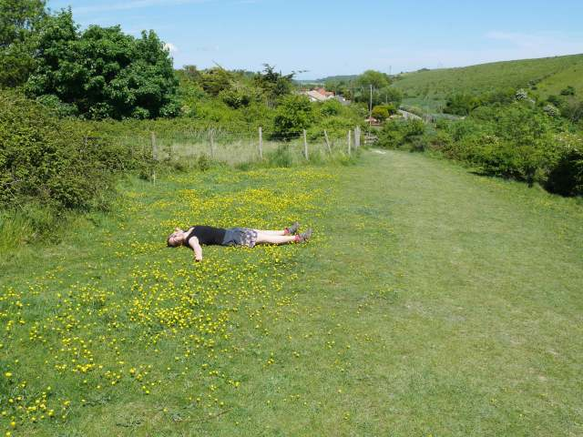 Laying in the buttercups