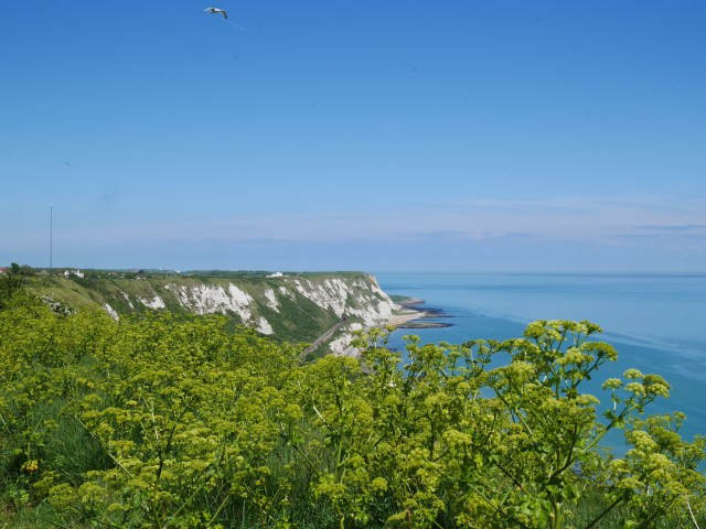 Our first view of the White Cliffs