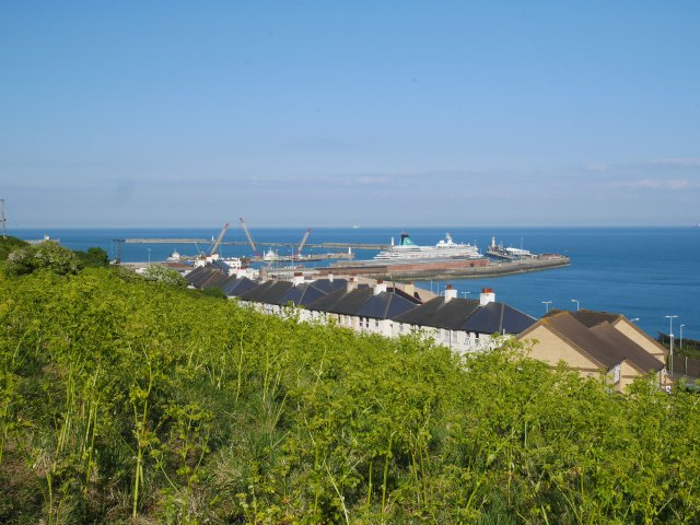 Dover views