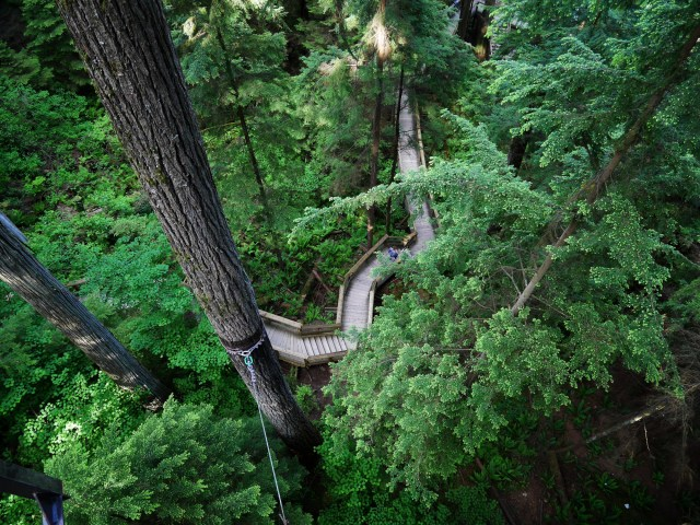 Looking down at the paths