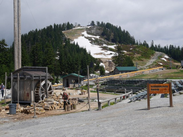 The top of Grouse Mountain