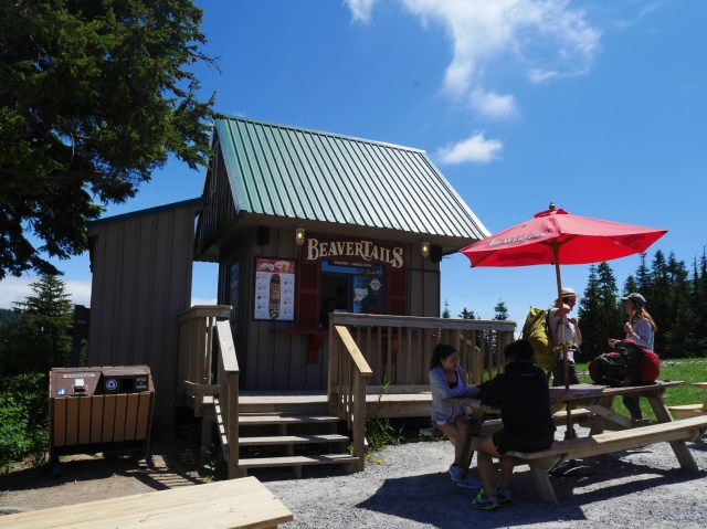 Beavertail stand