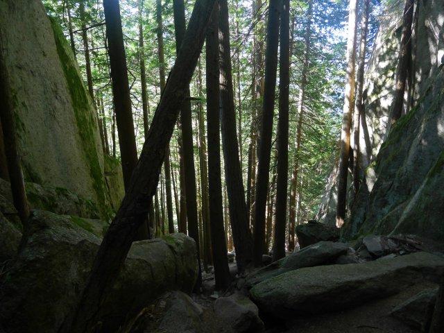 Climbing through a ravine