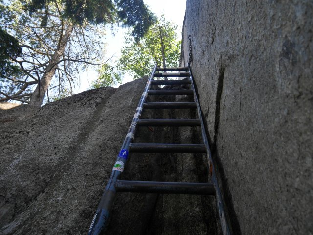 ladder to the top