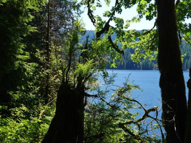 Lake View trail