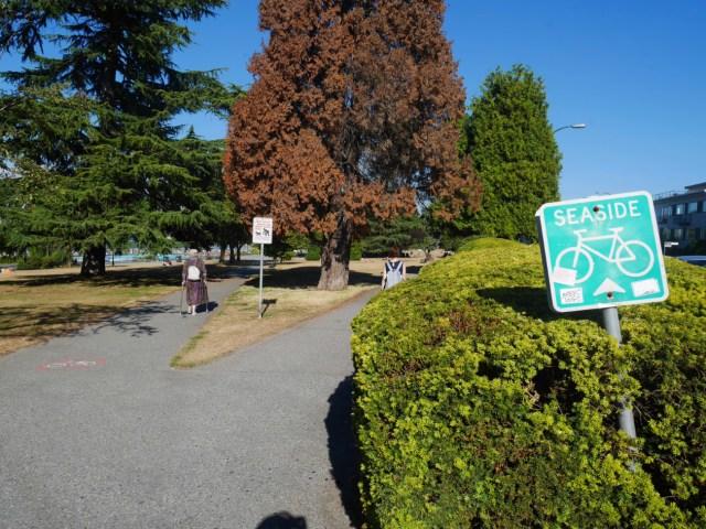 The bike path near Kits