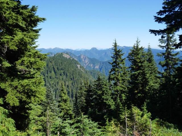 Alpine Trail views