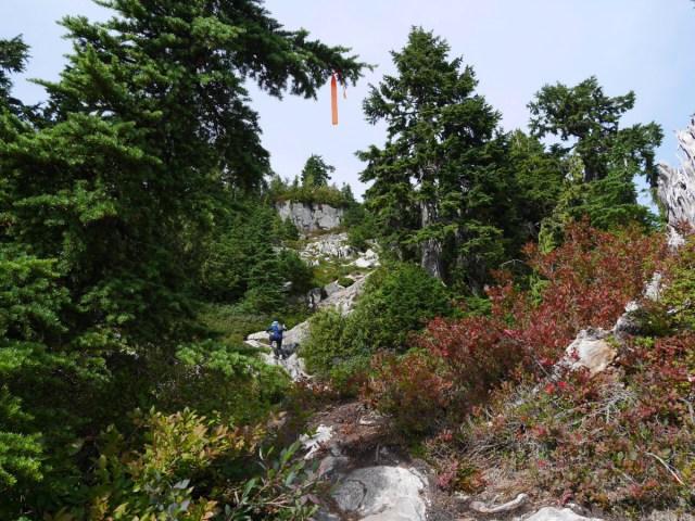 Coliseum mountain false peaks