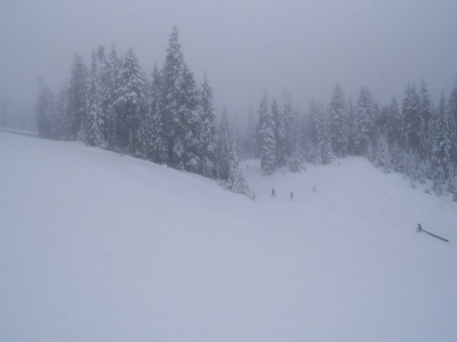 Mount Seymour snow views
