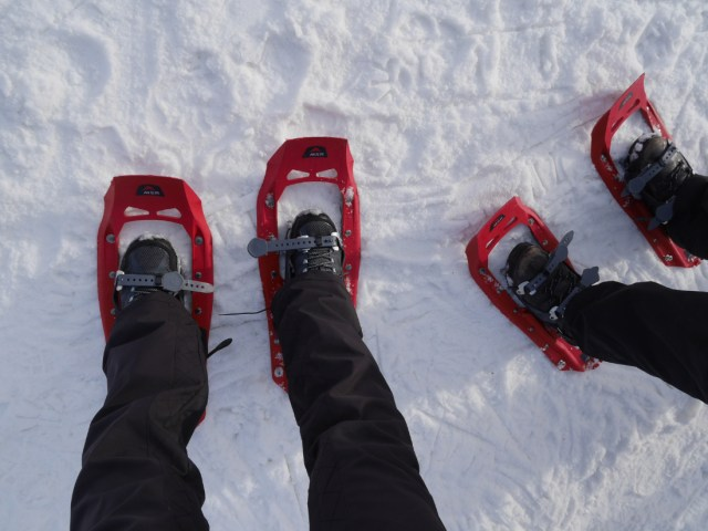 New-style snowshoes