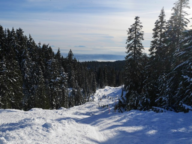 Looking down from Hollyburn Mountain
