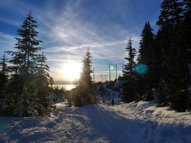 Heading back to the Nordic ski area