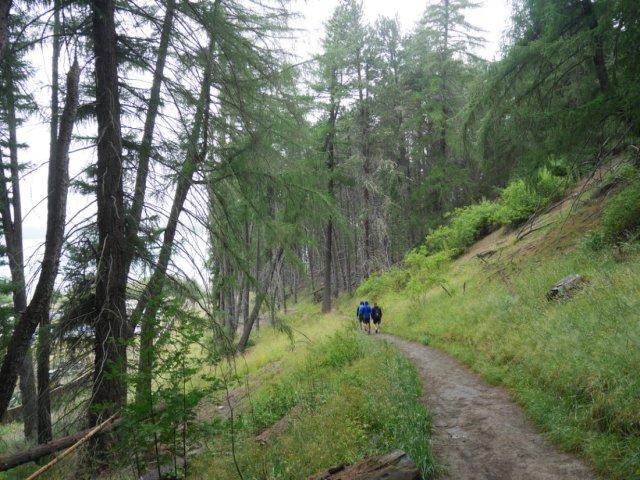 The start of Mount John Walkway