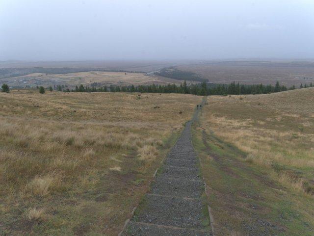 Steps up Mount John walkway