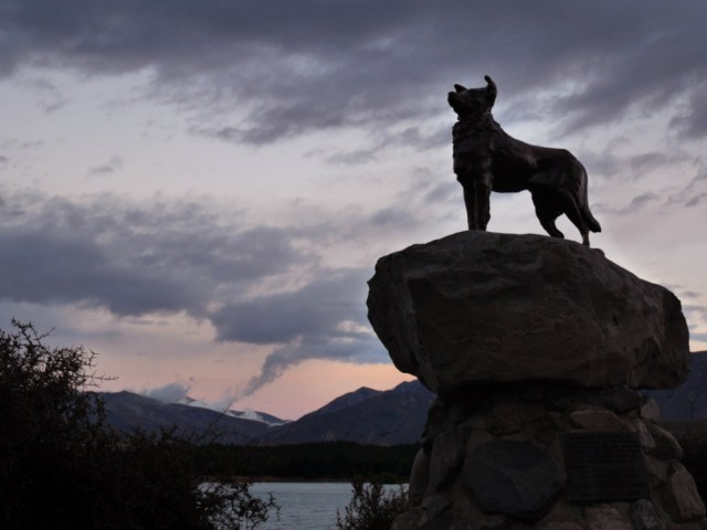 Statue of a collie dog