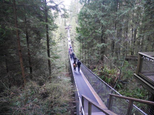 The Caplilano suspension bridge