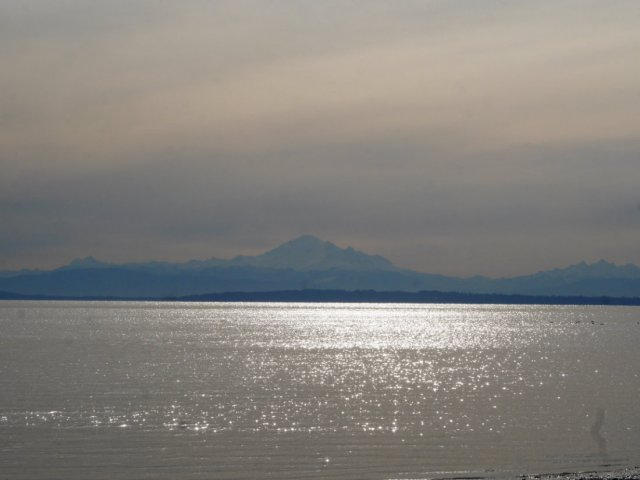 Mount Baker from Boundary Bay Regional Park