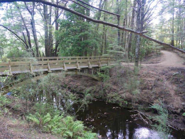 Mistletoe Lake track