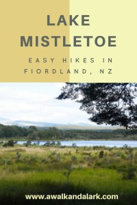 Lake Mistletoe - Fiordland hike