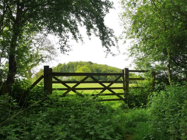 More gates