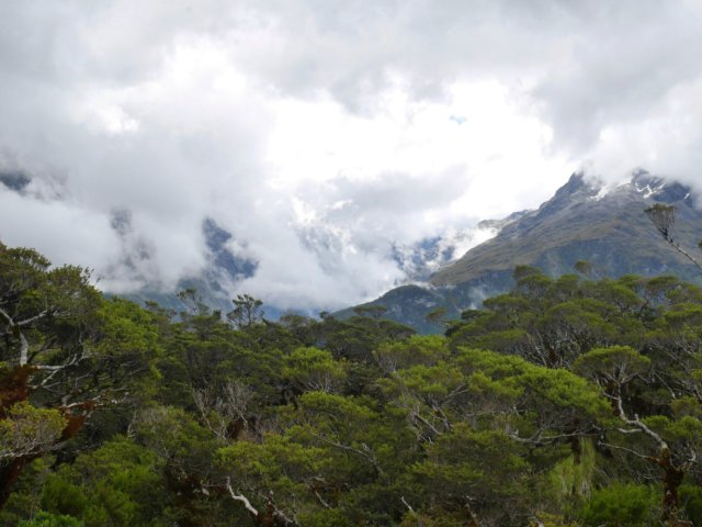 Pretty Key summit mountain views
