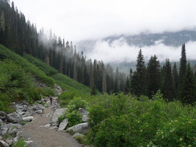 Misty views on the Joffre Lakes trail