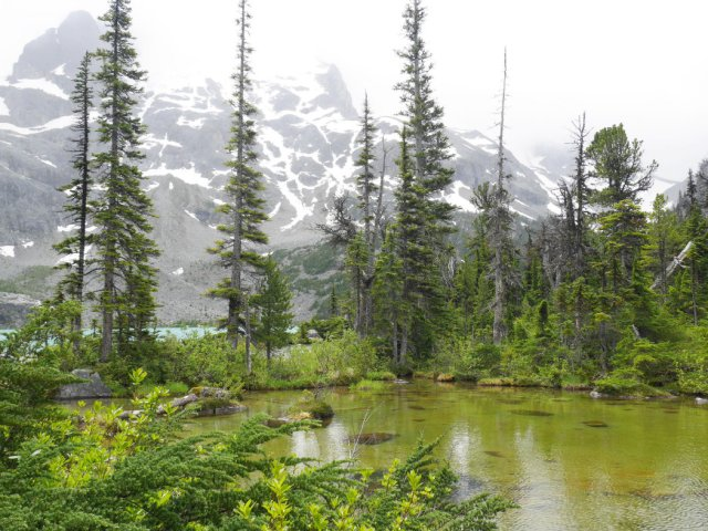 Green lake by Upper Joffre Lake