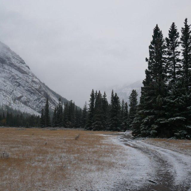 The path back with Mount Rundle
