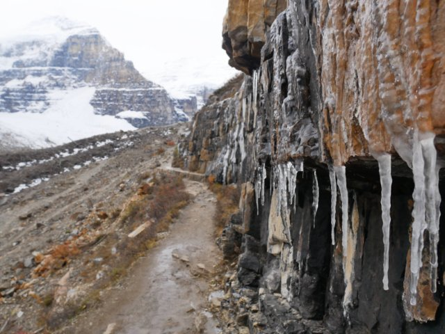 Icicles with the Lefroy glacier behind it