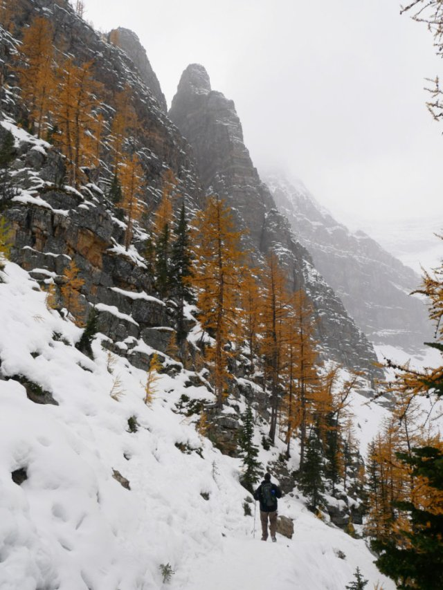 How gorgeous is the Devil's thumb and larches!