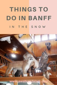 Things to do in Banff in the snow - museums
