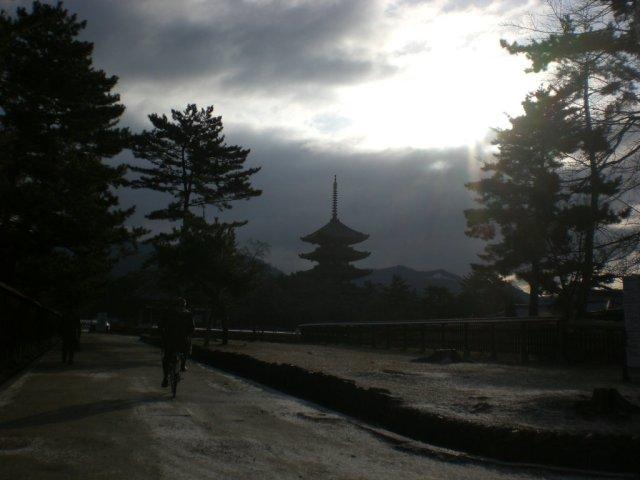 Moody Kofukuji view